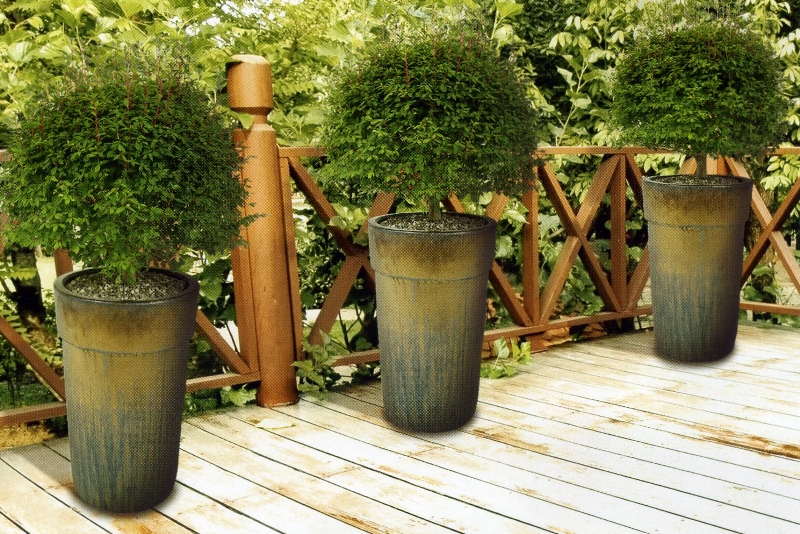 Озеленение веранды, террасы, балкона
