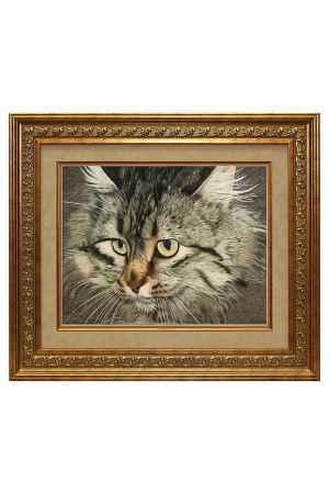 Купить Живой шелк Любимый котенок Живой шелк 1280413М96 МУЛЬТИКОЛОР