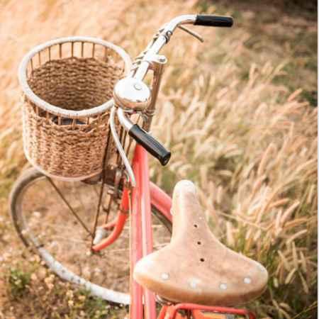 Купить Hoff Репродукция 50х50 см Велосипед