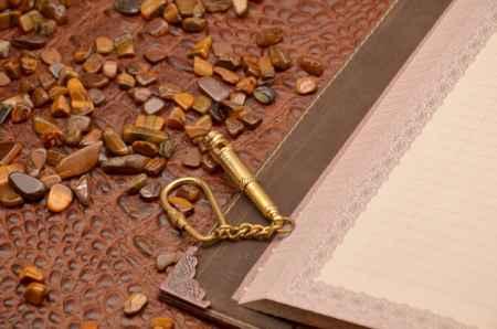 Купить Брелок для ключей. Коллекция Socotra (Морской свисток, золотой; металл)