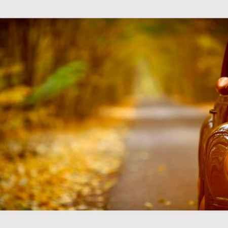 Купить Hoff Репродукция 30х80 см Осенняя дорога