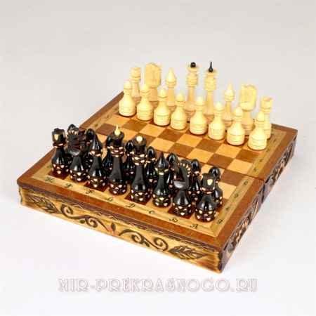 Купить Шахматы Поход ШХ-011