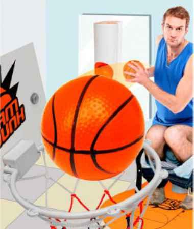 Купить Туалетный баскетбол