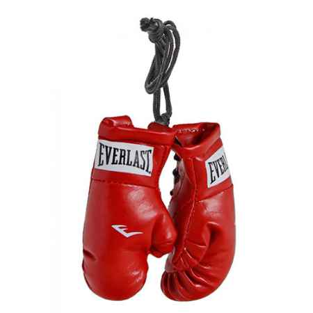 Купить Брелок Everlast Mini Boxing Glove In Pairs