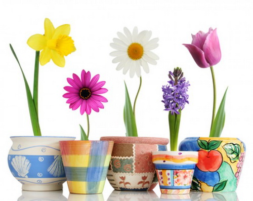 Бизнес по производству цветочных горшков