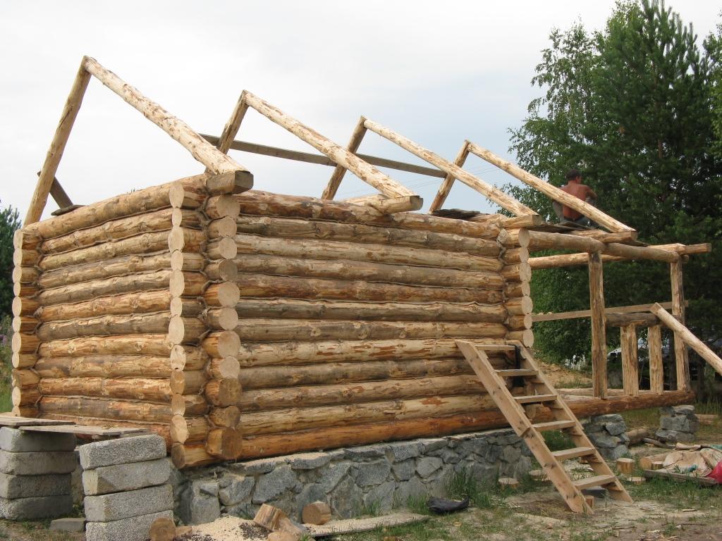 Из чего построить баню