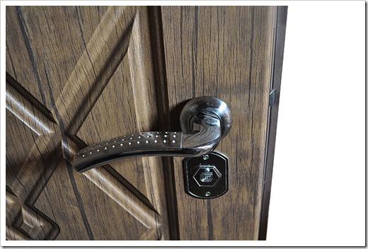 Дверная коробка и дверное полотно