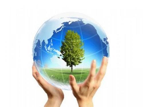 макулатура спасает деревья