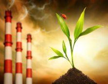 экспертиза экологическая
