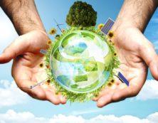 Экологический консалтинг - что это